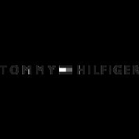 Tommy Hilfiger Iconic borsa AW0AW081000HS001 Borse